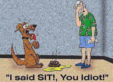 From Funny Jokes and Pictures