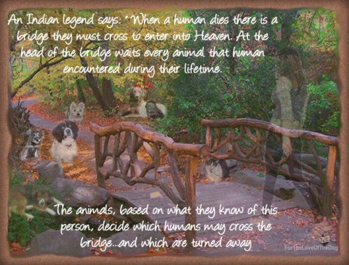 http://fortheloveofthedogblog.com/article/dog-writing-poetry/an-indian-legends-heaven