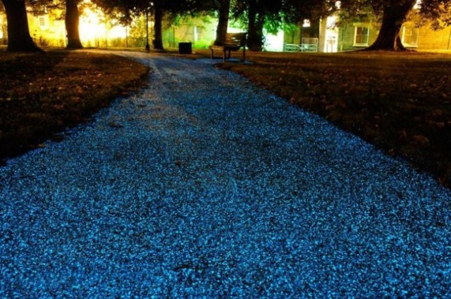 starpath-glowing-pathway-650x0