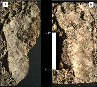 These two human prints, originally discovered in 1961, have been dated to be about 10,550 years old. (Photo courtesy Arturo Gonzalez)