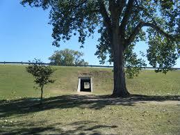 Image: www.texaswinter100k.com