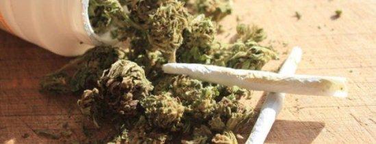 Marijuana-650x250